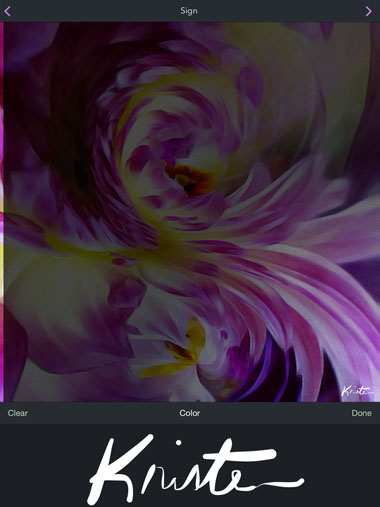 Abstract Art iPhone Flowers 14