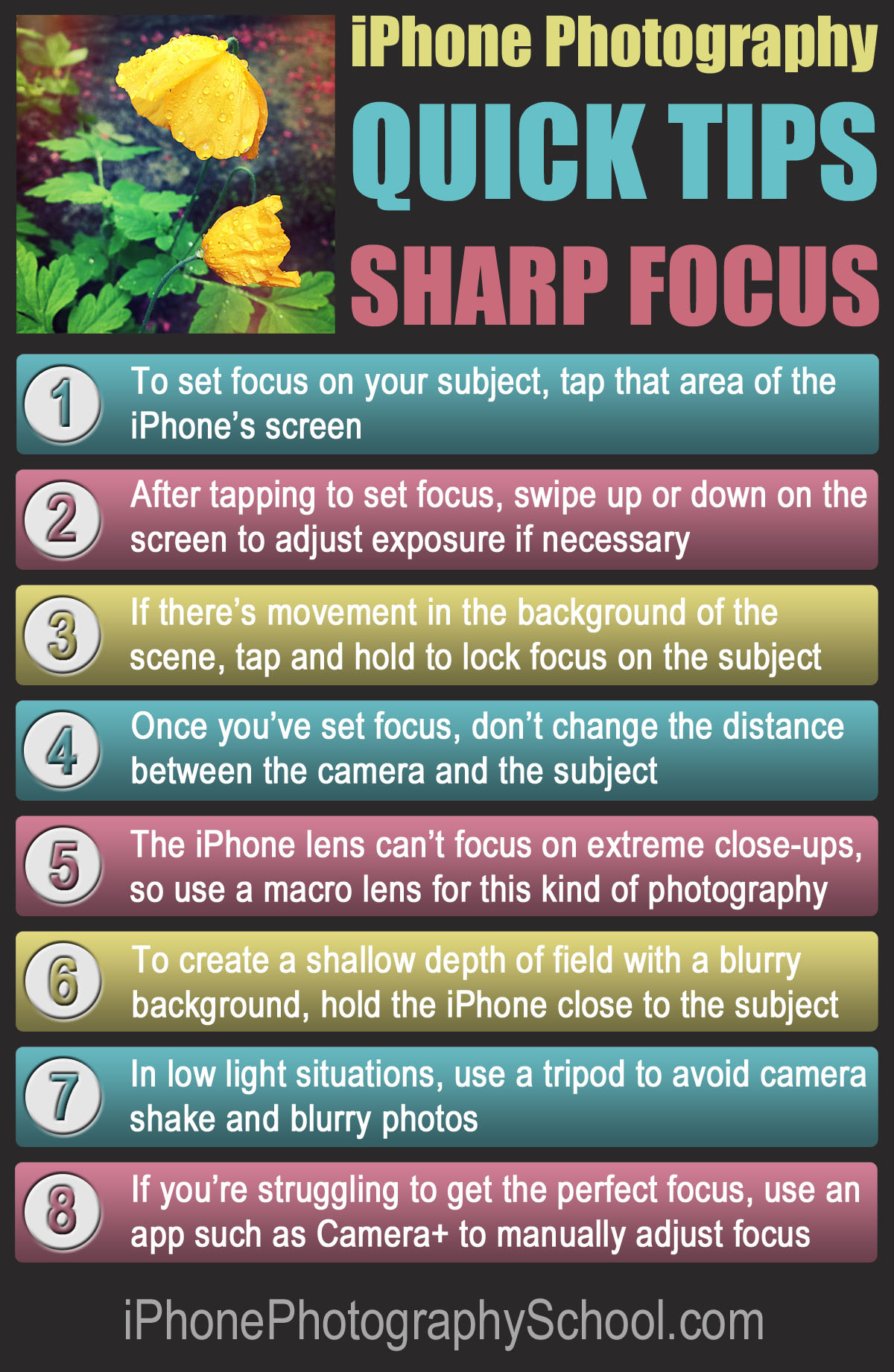 how to become a good photographer pdf