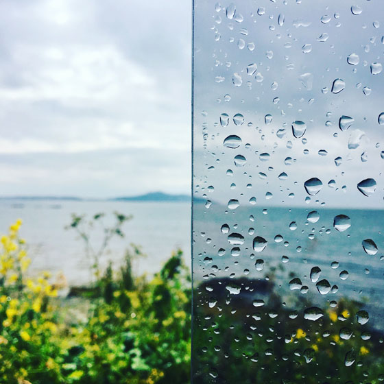 how to blur the background in your iphone photos