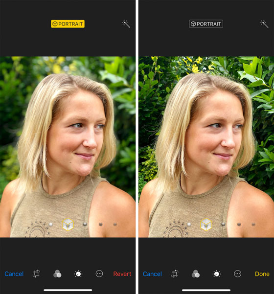 How To Blur Background On iPhone Portrait Mode