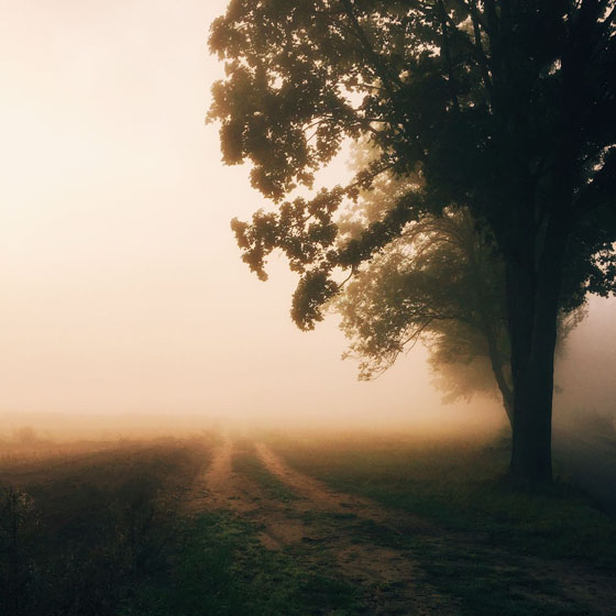 30 Stunning Landscape Photos Taken With IPhone